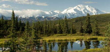 Discover Alaska Cruises and Cruise Tours